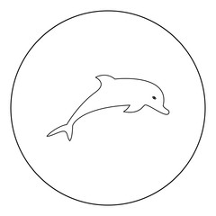 Dolphin icon black color in circle