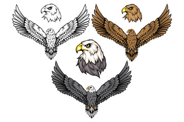 American eagle set. Bald eagle logo. Wild birds drawing. Head of an eagle. Vector graphics to design.