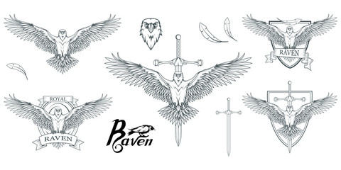 Set of different carrion-crows. Hand drawn of the raven. Wild birds drawing. Raven logo. Vector graphics to design.