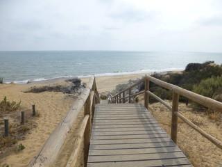 Parque Doñana zona Playa Cuesta Maneli en Huelva, zona costera con playa de arena fina blanca que forma parte del Parque de Doñana
