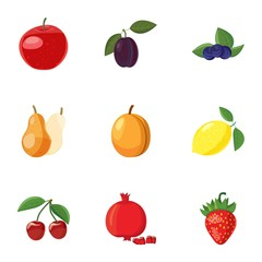 Orchard fruits icons set. Cartoon illustration of 9 orchard fruits vector icons for web