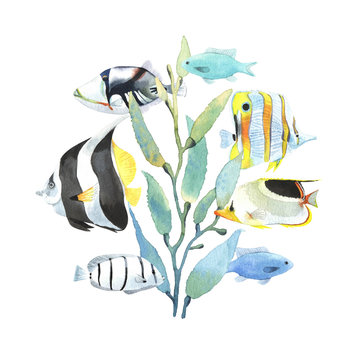 Round print with watercolor tropical fish and seaweed.