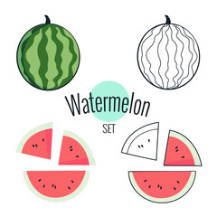 Watermelon vector set. illustration on white, cartoon flat design
