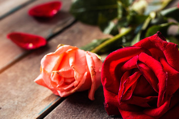 Roses on the wooden floor.
