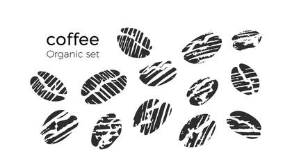 Vector set of natural coffee bean.