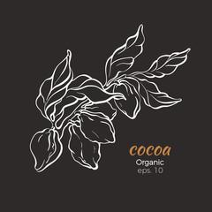 Vector of cocoa tree branch