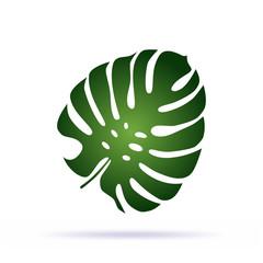 Green palm leaf icon