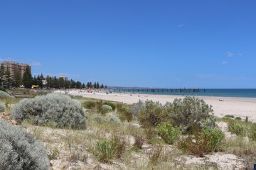 Glenelg Beach near Adelaide in South Australia with protected dunes in front