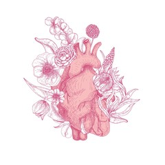 Beautiful realistic anatomical heart overgrown with spring blooming flowers hand drawn with pink contour lines on white background. Romantic decorative vector illustration in elegant etching style.