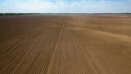 Wall Mural - Agricultural ploughed field and soil in spring against the blue sky. Photo from the drone