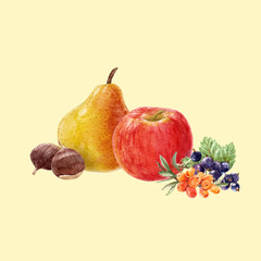 Watercolor fruit vector composition