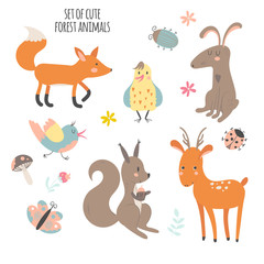 Forest cute animals collection
