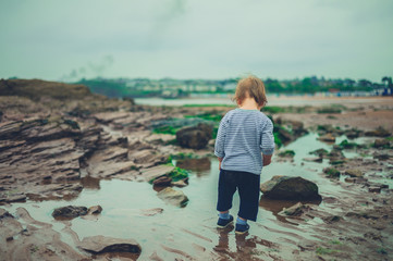 Toddler boy walking on the beach