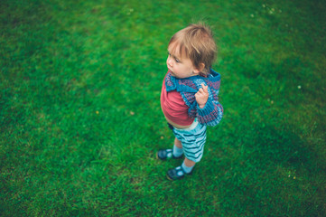 Little toddler boy on green lawn
