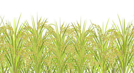 Rice field. Seamless horizontal background with realistic vector rice panicles, ready for parallax effect.