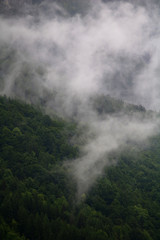 foggy clouds rising from dark alpine mountain forest
