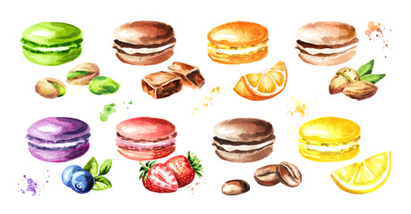 Aluminium Prints Macarons Traditional french Cakes macaron or macaroon, colorful cookies with fruits, berries and nuts set. Watercolor hand drawn illustration, isolated on white background