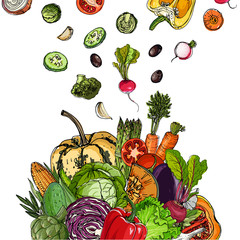Square of colored vegetables