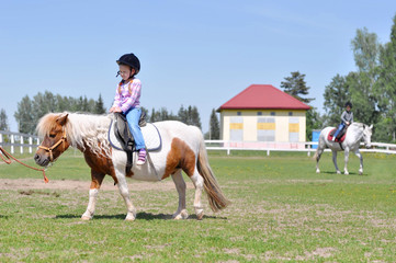 Cute little girl riding a horse pony