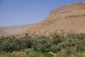 Oasis in Morocco