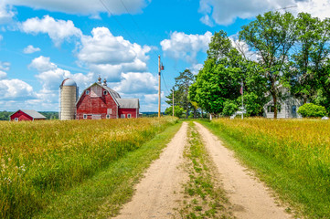 Pathway to a Minnesota Farm Wall mural