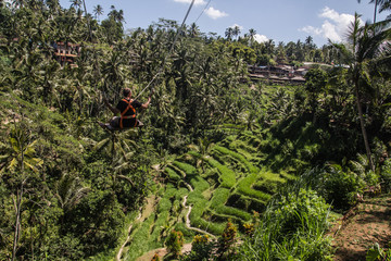 Swing over Tegallalang ricefields in central Bali