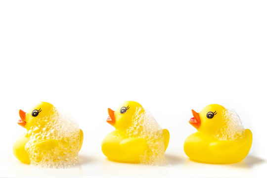 3 Yellow rubber ducks with soap suds on their heads, swimming in a line on white background
