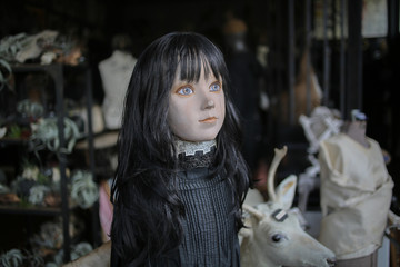 Spooky Female Mannequin with Black Hair - Oddities