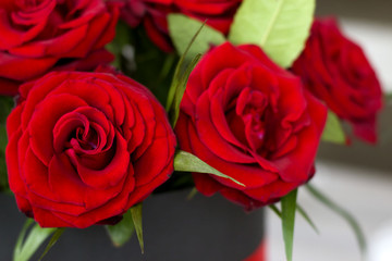 Beautiful bouquet of roses in a gift box. Bouquet of red roses. Red roses close-up