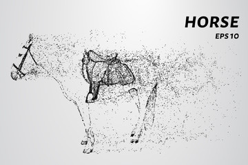 Horse of the particles. A horse consists of dots and circles.
