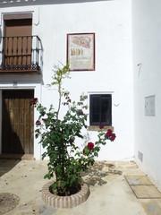 Cartajima,pueblo blanco de Málaga, Andalucía (España) en la sierra de Ronda