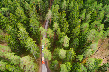 Transportation background. Trucks moving through forest on narrow road.