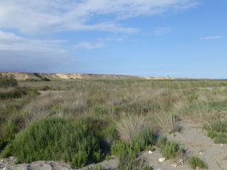 Parque natural Punta Entinas Sabinar en Almerimar / Ensenada San Miguel, poblacion  situada en El Ejido, Almeria ( Andalucia, España)