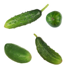 set of cucumbers on white background