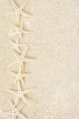 ヒトデ サンゴ砂