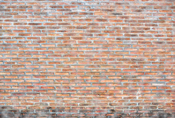 The dirty old red brick wall.