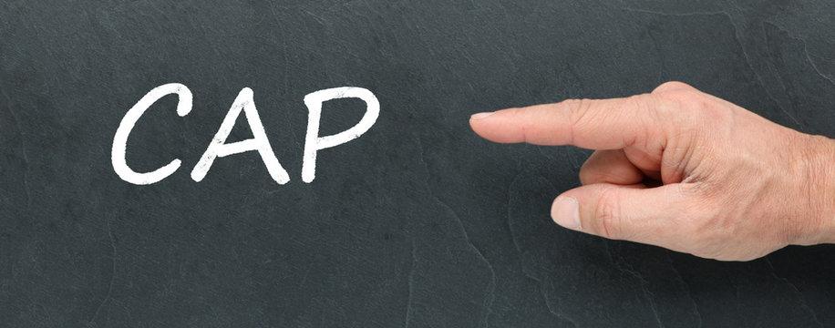 CAP, Certificat d'aptitude professionnelle