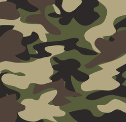 Camouflage pattern background vector illustration