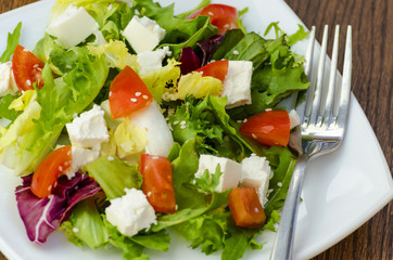 Dietary salad with tomatoes and feta cheese