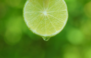 waterdrop falling on limes green background