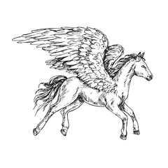 Pegasus side view, hand drawn outline doodle sketch, black and white vector illustration