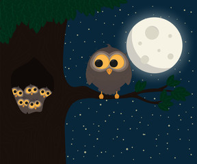 cute owl sit at hollow under the moon