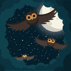 the owls flies in the clouds under moon