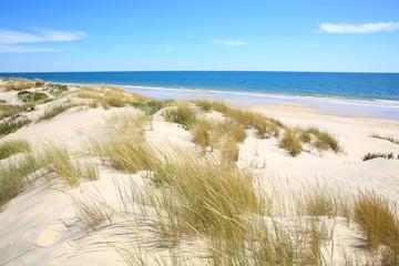 Wonderful beach in the Coto de Donana National Park in Andalusia, Costa de la Luz, Spain