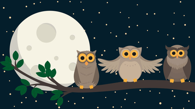 cute owls sit at branch under the moon