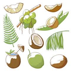 Coconuts hand drawn set