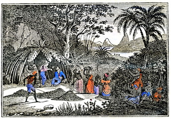 Picking of coffee cherries in Brazil (from Das Heller-Magazin, May 3, 1834)