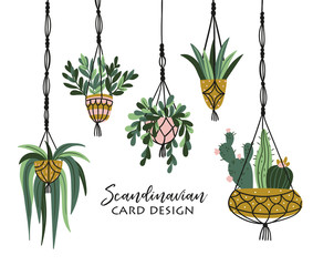 Macrame plant hangers in scandinavian interior. Vector stylish elements design.