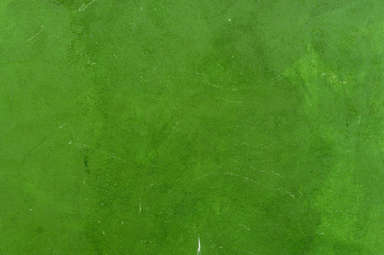 Wall texture background. Painted cement wall backdrop. Design element.