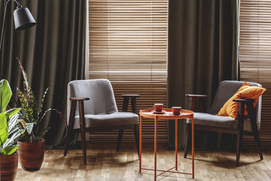 Vintage armchairs, orange coffee table with two cups, plants standing by the window with curtains and blinds in a living room interior